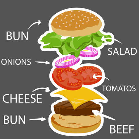 ingredient: Burger ingredient, isolated fast food ingredient vector