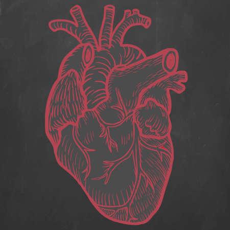Red Hand drawn heart on black background Illustration
