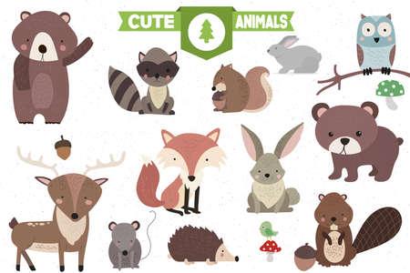 Colección de lindos animales del bosque conjunto paquete Vectores