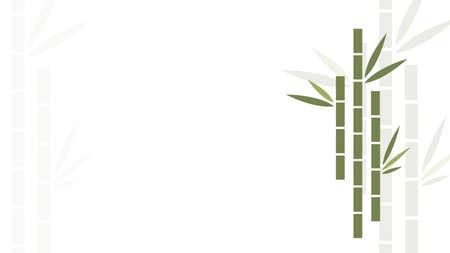 Bamboo background design or vector layout for website. Chinese, asian or eastern background or layout with bamboo illustration. Flat clean design. Green bamboo on white background