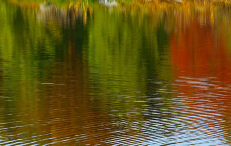 Reflections in a lake of Autumn Foliage