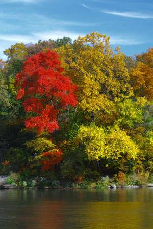 Autum Foliage and Lake