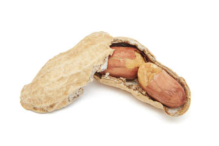 shelled: Closeup image of a open shelled peanut on a white background