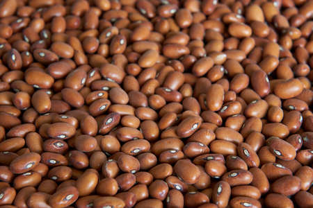 Closeup image ecological brown beans with a narrow depth of field Stock Photo