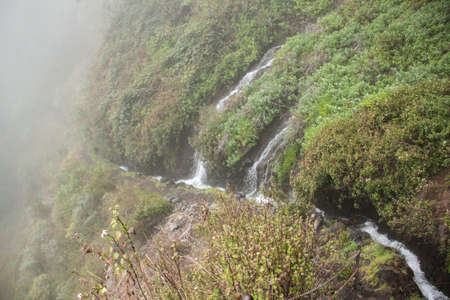 The hiking way to the springs of marcos and las nieves