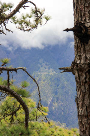 viewpoint in the national park caldera de taburiente