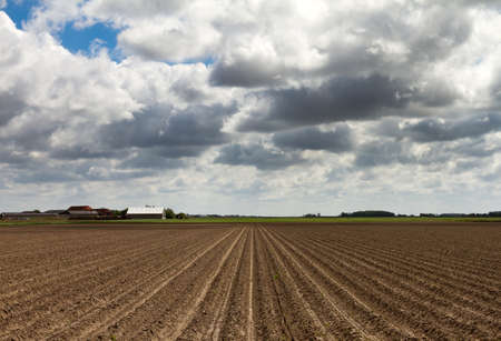 Freshly plowed soil with a nice cloudscape in the Netherlands  hdr photo