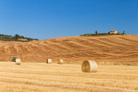 Typical landscape in Tuscany, Italy, on a clear summer day photo