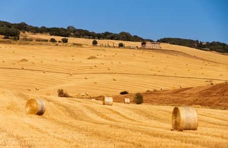 Beautiful image of a Tuscan landscape with golden fields and hay bales on the hills in Italy photo