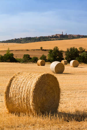Bales of hay in the landscape of Tuscany, Italy photo
