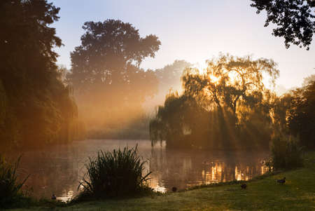 Early morning sunrise at the Vondel park in Amsterdam, Netherlands photo