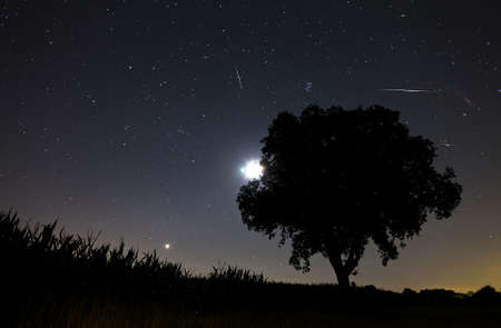 astrophotography: Beautiful image during the night of the Perseid meteor shower in the summer of 2012 in the Netherlands, showing a number of meteorites
