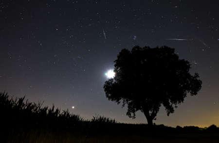 meteor: Sch�nes Bild w�hrend der Nacht der Perseiden Meteorschauer im Sommer 2012 in den Niederlanden, zeigt eine Reihe von Meteoriten