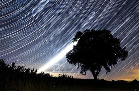 Beautiful star trail image during the night of the Perseid meteor shower in the summer of 2012 in the Netherlands