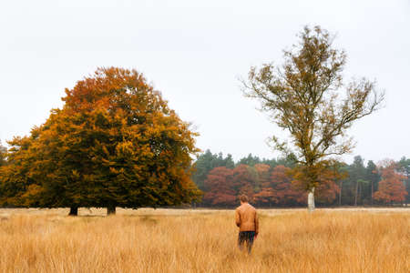 Young man wanders in a field in autumn in national park  De hoge Veluwe  in the Netherlands Stock Photo - 18357788