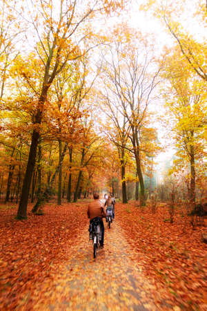 Cycling trough the woods in national park  De hoge veluwe  in the Netherlands in autumn photo