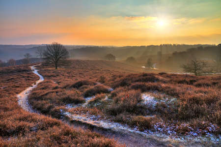 Early, cold winter morning at the Posbank in the Netherlands with a rising sun over a beautiful landscape  HDR photo