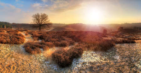 veluwe: Beautiful winter sunrise landscape at national park the Posbank in the Netherlands Stock Photo