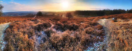veluwe: Beautiful 180 degree winter sunrise HDR panorama at the Posbank in the Netherlands