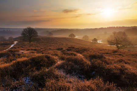 Beautiful winter sunrise landscape at national park the Posbank in the Netherlands photo