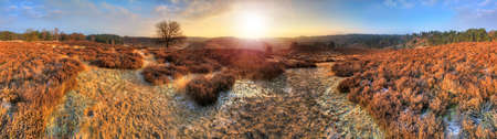 Beautiful 360 degree winter sunrise HDR panorama at the Posbank in the Netherlands photo