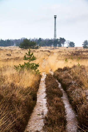 veluwe: Path towards the observation tower  brandtoren  towering over the landscape at the Posbank and Veluwe zoom in the Netherlands Stock Photo
