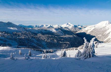 soleil: Beautiful fresh powder landscape with pine trees in Les Portes du Soleil in the European Alps