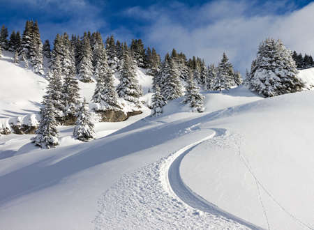 Awesome first track on a sunny powder day in Les Portes du Soleil in the European alps photo