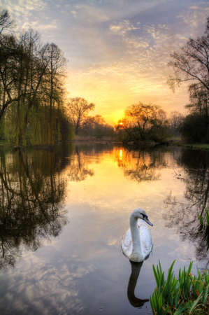 Beautiful sunrise in the Vondelpark in Amsterdam, the Netherlands  HDR photo