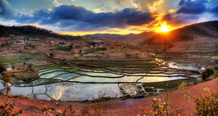 landscape rural: Beautiful panorama of the landscape of Madagascar with rice plantations and a nice cloudscape