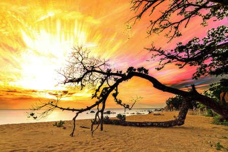 timelapse: Beautiful stacked timelapse image of a sunset at the coast in Masoala, Madagascar