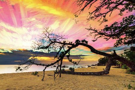 cielo y mar: Hermosa imagen timelapse apilada de una puesta de sol en la costa en Masoala, Madagascar Foto de archivo