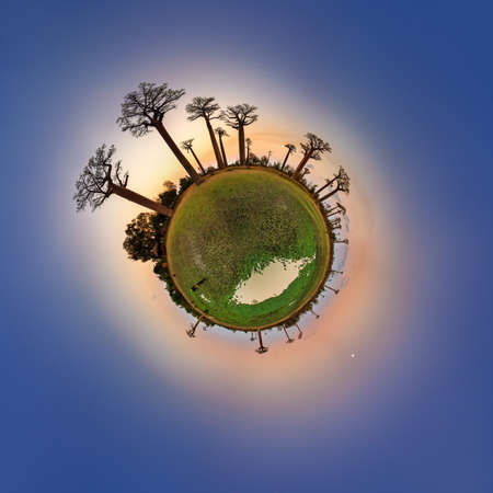 Beautiful little planet at the avenue of the baobabs in Madagascar Stock Photo
