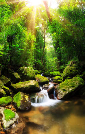 Beautiful vertical panorama of a cascade in the rainforest jungle of the Masoala National Park in Madagascar