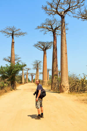 alley of baobabs: Beautiful Caucasian male tourist with camera at the alley of the Baobabs in Madagascar