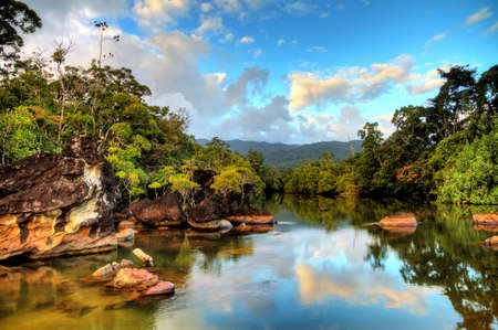 Beautiful view of the tropical jungle river at the beach of Masoala National Park in Madagascar 스톡 콘텐츠