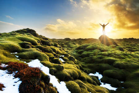 nature scenery: Beautiful tourist posing in the amazing volcanic mossy landscape of Eldhraun at sunrise in Iceland