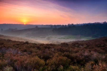 posbank: Beautiful sunset in national park the Posbank at the Hoge Veluwe in the Netherlands