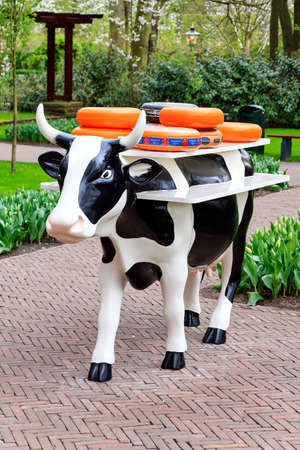 dutch typical: Typical dutch image of a cow with cheese on her back in the Keukenhof in Lisse, the Netherlands, on april 7, 2014 Editorial