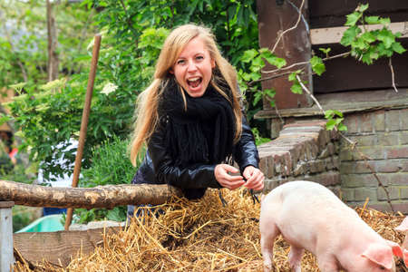petting: Young very blond girl having fun with the piglets in the petting zoo in spring Stock Photo