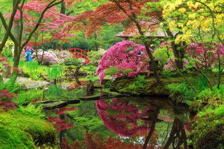 Beautiful Japanese garden in parkland Clingendael in Wassenaar, The Netherlands Stock Photo - 47097699