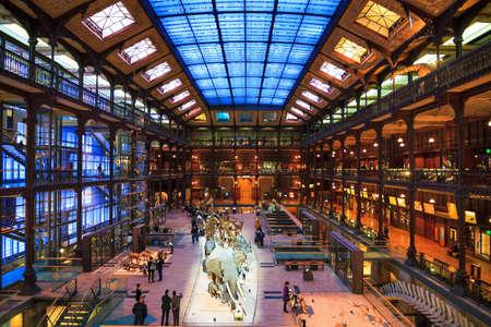 galería central de la evolución en el Museo Nacional francés de Historia Natural Museo Nacional de Historia Natural en París, Francia, el 22 de febrero, 2014