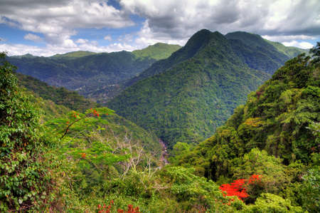 Beautiful view over the El Yunque national forest in Puerto Rico Stock Photo