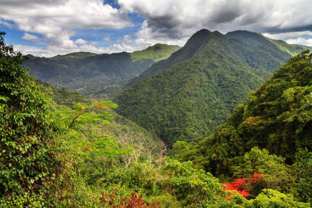 Amazing view over the jungle forests in the hills of central Puerto Rico in summer