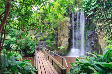 Indoor Waterfall: Beautiful Indoor Waterfall In The Tropical Hall In  Burgers Zoo In Arnhem,