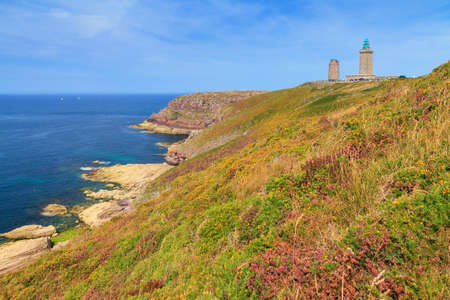 Beautiful landscape view of the cliffs at Cap Fréhel in Brittany, France, with its lighthouses and moorland with vibrant heather flowers (Calluna vulgaris) and common gorse (Ulex europaeus)