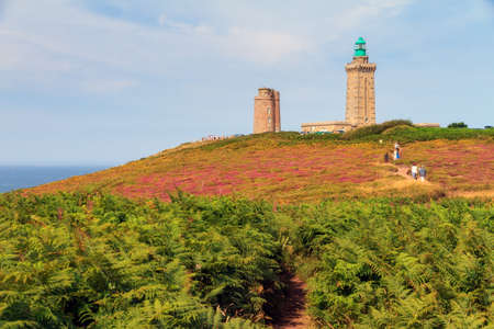 Beautiful landscape view of Cap Fréhel in Brittany, France, with its lighthouses and moorland with ferns, vibrant heather flowers (Calluna vulgaris) and common gorse (Ulex europaeus)