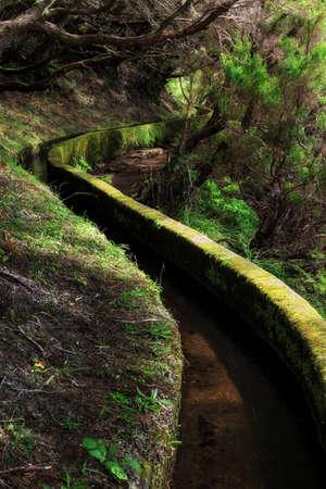 Piękny widok na krajobraz szlaku turystycznego w przyrodzie na zielonej wyspie Zdjęcie Seryjne