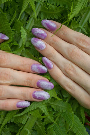 nails: manicure, designed purple nails over green fern  Stock Photo