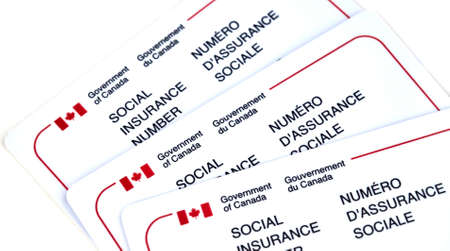 MONTREAL, CANADA - MARCH 4, 2016 - Canadian social Insurance number card over white.  The Social Insurance Number is a number that requires to work in Canada or to receive government benefits.